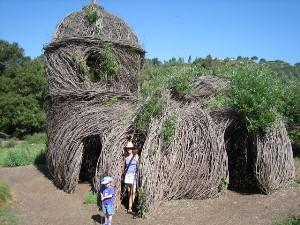 ... Santa Barbara Botanic Garden.